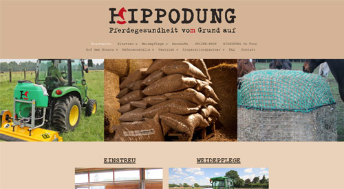 Brainstep GmbH & Co.KG